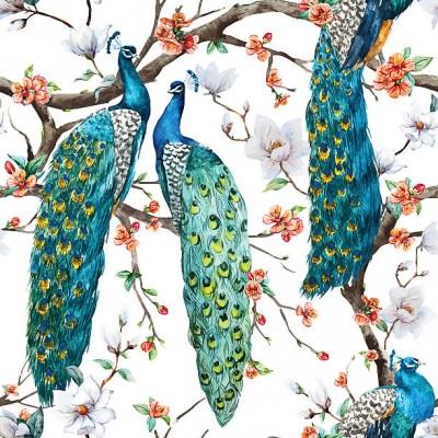 Peacock Besta Front